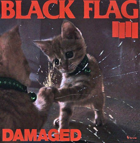 Cat Flag
